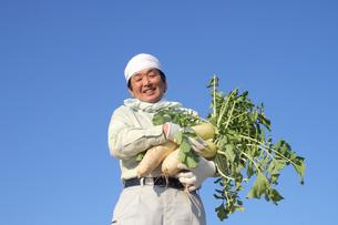 青空と野菜を持つ男性の農業人物の写真の写真素材 [FYI00412392]
