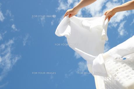 晴天に洗濯物を干す女性の手の写真の素材 [FYI00412499]
