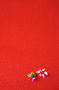 お正月縁起物飾り羽子板の羽根の写真の素材 [FYI00412510]