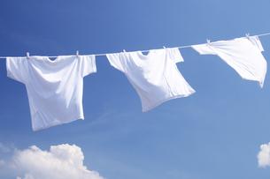 白い洗濯物 青空に干したTシャツの写真の素材 [FYI00412527]