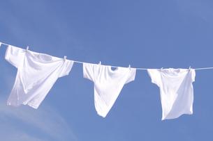 白い洗濯物 青空に干したTシャツの写真の素材 [FYI00412532]