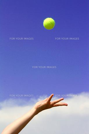 テニス サーブトスをする女性の手の写真の写真素材 [FYI00412540]