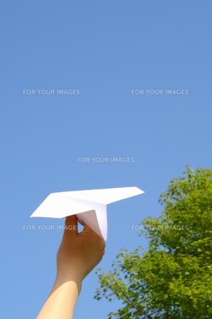 紙飛行機を持つ女性と新緑の写真の素材 [FYI00412587]