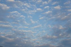 空の写真素材 [FYI00412650]