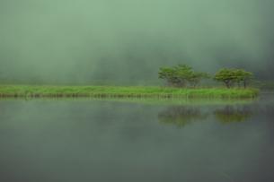 霧の赤城山覚満淵の素材 [FYI00412661]
