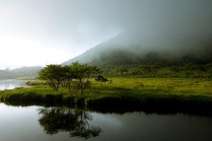 霧がかる赤城山覚満淵の素材 [FYI00412689]