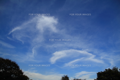 青空の雲の写真素材 [FYI00412774]