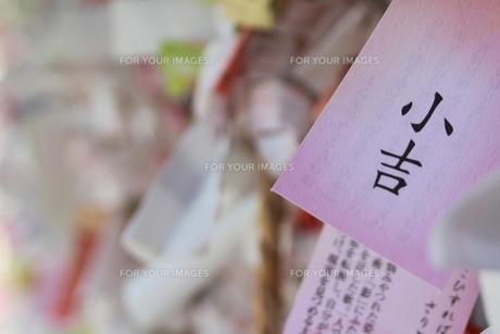 おみくじの写真素材 [FYI00412816]