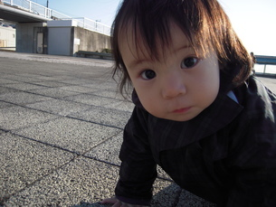 親水公園でハイハイする赤ちゃんの写真素材 [FYI00413133]