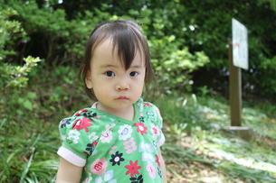 澄んだひとみの小さな女の子の写真素材 [FYI00413147]