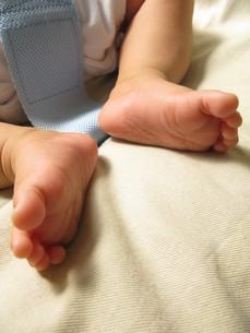 赤ちゃんの足の写真素材 [FYI00413636]