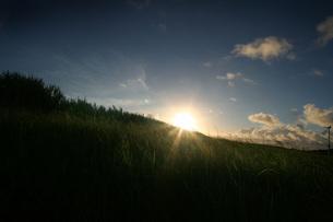 夜明け前の牧草地の写真素材 [FYI00413863]