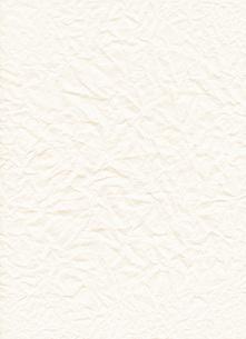 クシャクシャの紙の素材 [FYI00413919]