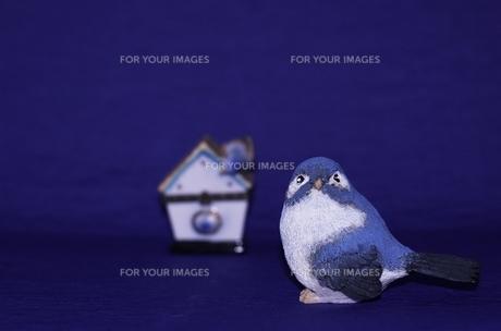 小鳥の置物と巣箱の素材 [FYI00414115]
