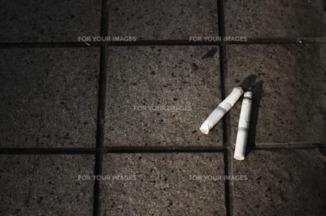 タバコのポイ捨ての写真素材 [FYI00414120]