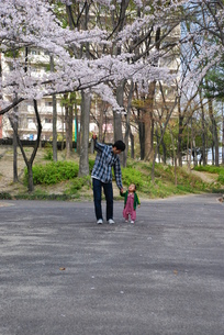 散歩コースの写真素材 [FYI00414302]
