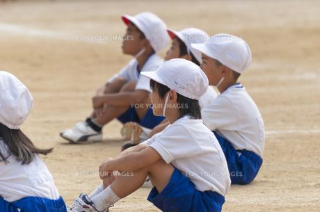玉入れの結果を楽しみに待つ生徒の写真素材 [FYI00414550]