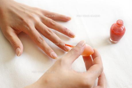 マニキュアを塗る女性の手の写真素材 [FYI00415094]