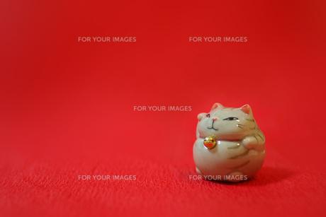 招き猫の写真素材 [FYI00415196]