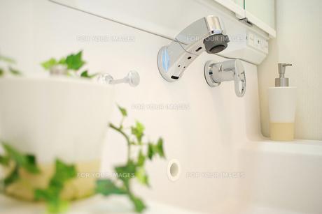 洗面台の写真素材 [FYI00415292]