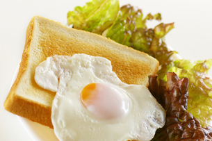 目玉焼きとトーストの写真素材 [FYI00415502]
