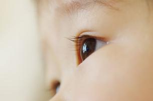 幼児の眼差しの写真素材 [FYI00415533]