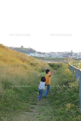 草むらで遊ぶ兄弟の写真素材 [FYI00415802]