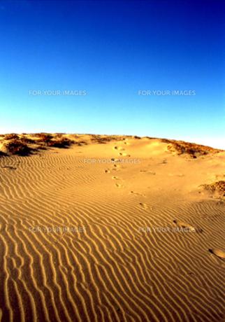 熱砂の写真素材 [FYI00415828]