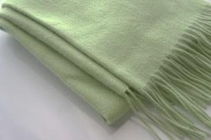 緑のマフラーの写真素材 [FYI00415880]