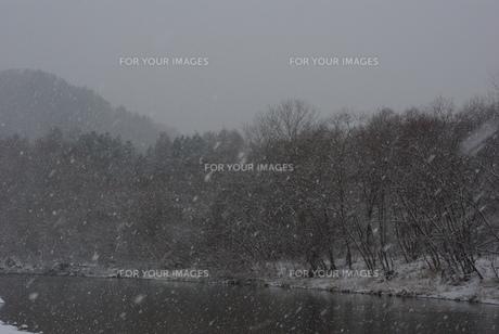 冬の川景色の素材 [FYI00415912]