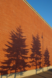 塀に映る影の写真素材 [FYI00415927]