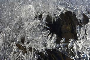 氷の結晶の写真素材 [FYI00415946]