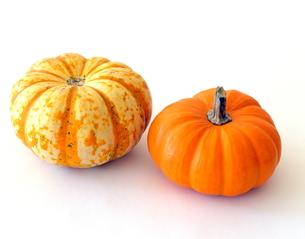 ハロウィンかぼちゃの写真素材 [FYI00416051]