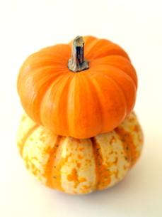 ハロウィンかぼちゃの写真素材 [FYI00416053]