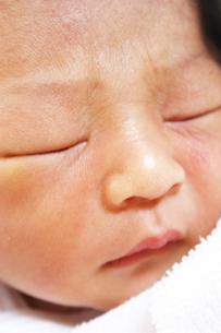 誕生翌日の赤ちゃんの写真素材 [FYI00416085]
