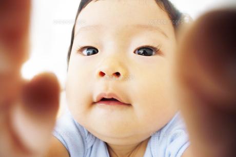 遊んでいる乳児の写真素材 [FYI00416095]