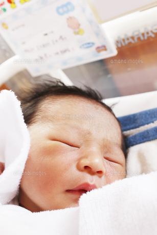 誕生翌日の赤ちゃんの写真素材 [FYI00416104]