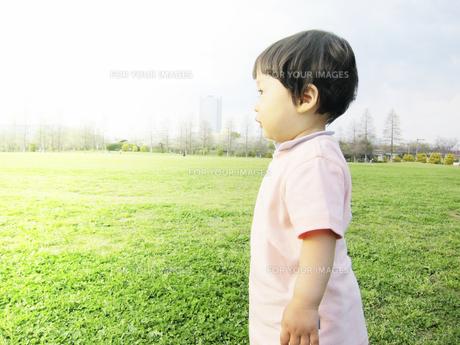 公園で遊ぶ幼児の写真素材 [FYI00416126]