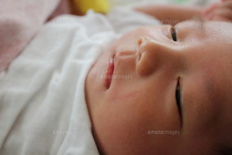 生後2か月の男の赤ちゃんの写真素材 [FYI00416207]