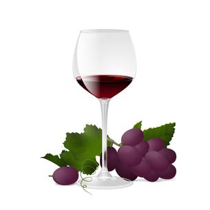 ワインとぶどうの写真素材 [FYI00416211]