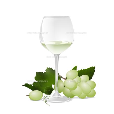 ワインとぶどうの写真素材 [FYI00416235]