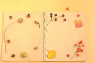 木の実のノートの写真素材 [FYI00416283]