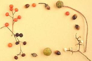 木の実のフレーム②の写真素材 [FYI00416289]