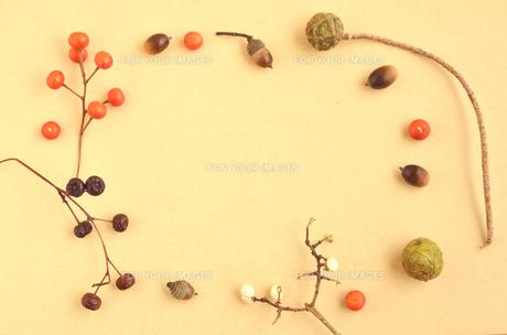 木の実のフレームの素材 [FYI00416301]