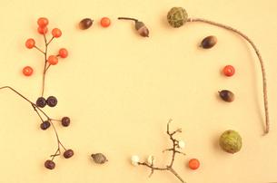 木の実のフレームの写真素材 [FYI00416301]