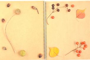 木の実のノート(フレーム)の写真素材 [FYI00416305]