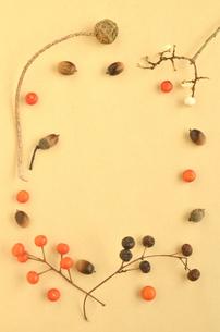木の実のフレーム(縦)の写真素材 [FYI00416311]