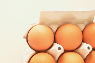 卵パック(横)の写真素材 [FYI00416321]