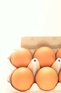 卵パック(縦)横並びの写真素材 [FYI00416342]