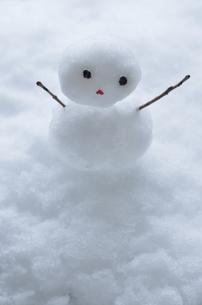 雪だるまの写真素材 [FYI00416428]